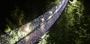 Capilano Canyon lights Canada