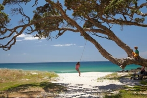 Young Girl on Rope Swing under Pohutukawa Tree, Whangapoua Beach, Coromandel, North Island, New Zealand